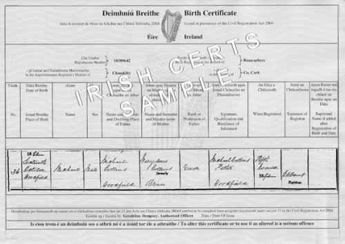 What does an irish birth certificate look like blurtit there are pictures of certificates on the irish certificates irish certificates website here is one for michael collins who was born in 1890 yelopaper Choice Image